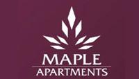 Maple zirakpur